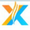 石家莊信游logo