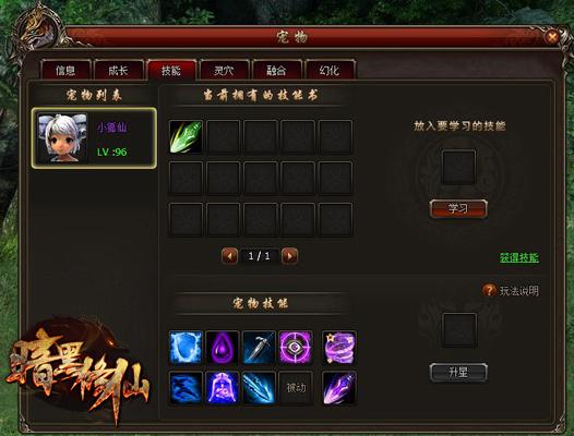 暗黑修仙宠物系统玩法揭秘